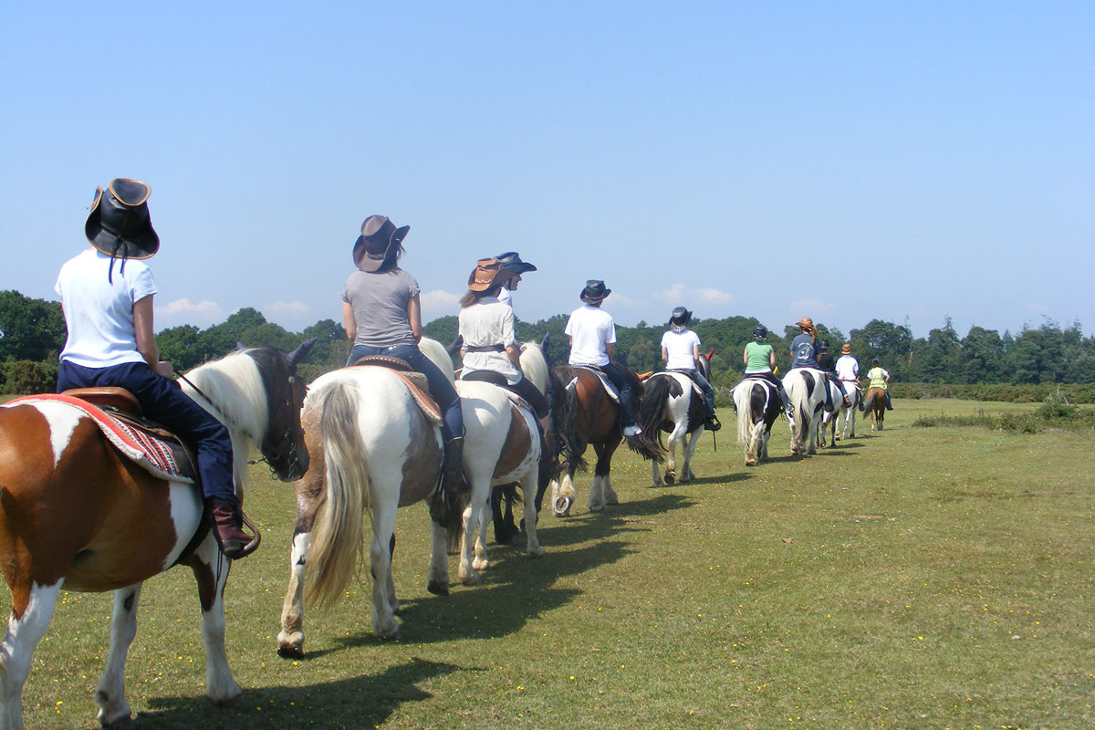 Team Building In The New Forest Western Horse Riding